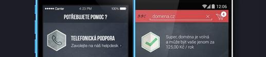Hlavička aplikace WebSupport domény